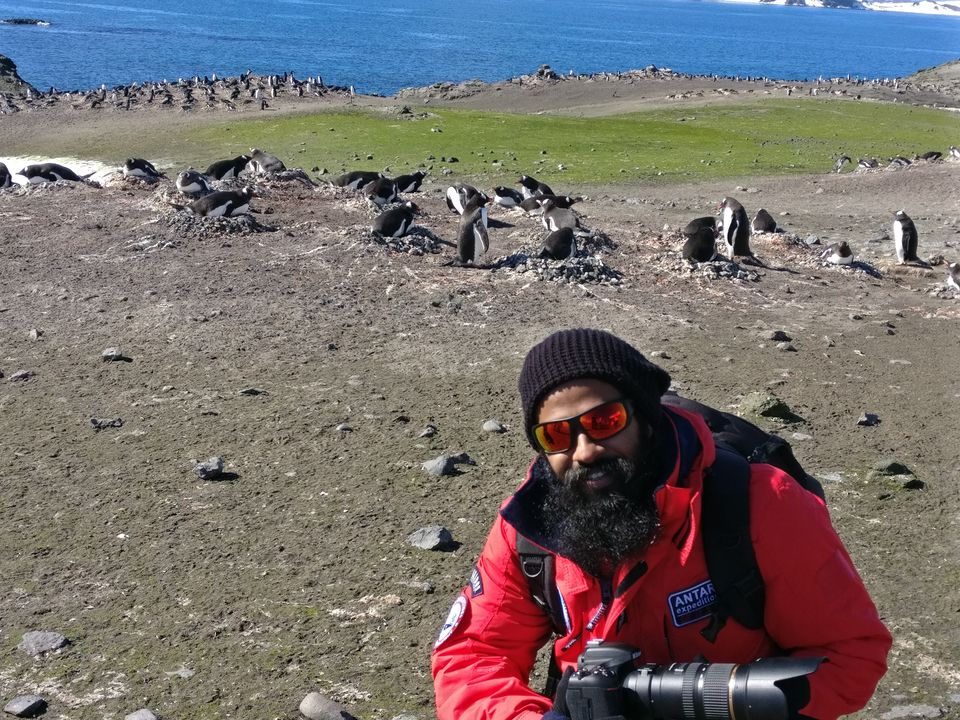 Penguin colony behind me at Barrientos Island